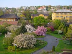 7 gyönyörű magyar arborétum, ahova feltétlenül menjetek el a gyermekeddel