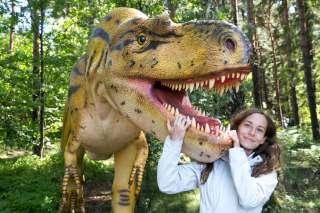 Állatkertek, vadasparkok, dinoszauruszok, lovasbemutatók, madárles - 20 szuper állatos hely Budapesten és vidéken, ahova menjetek el a gyerekkel!