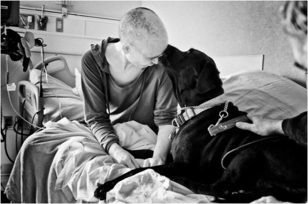 Megrázó fotósorozatban örökítette meg felesége harcát a mellrákkal - 10 kép, ami többet mond ezer szónál