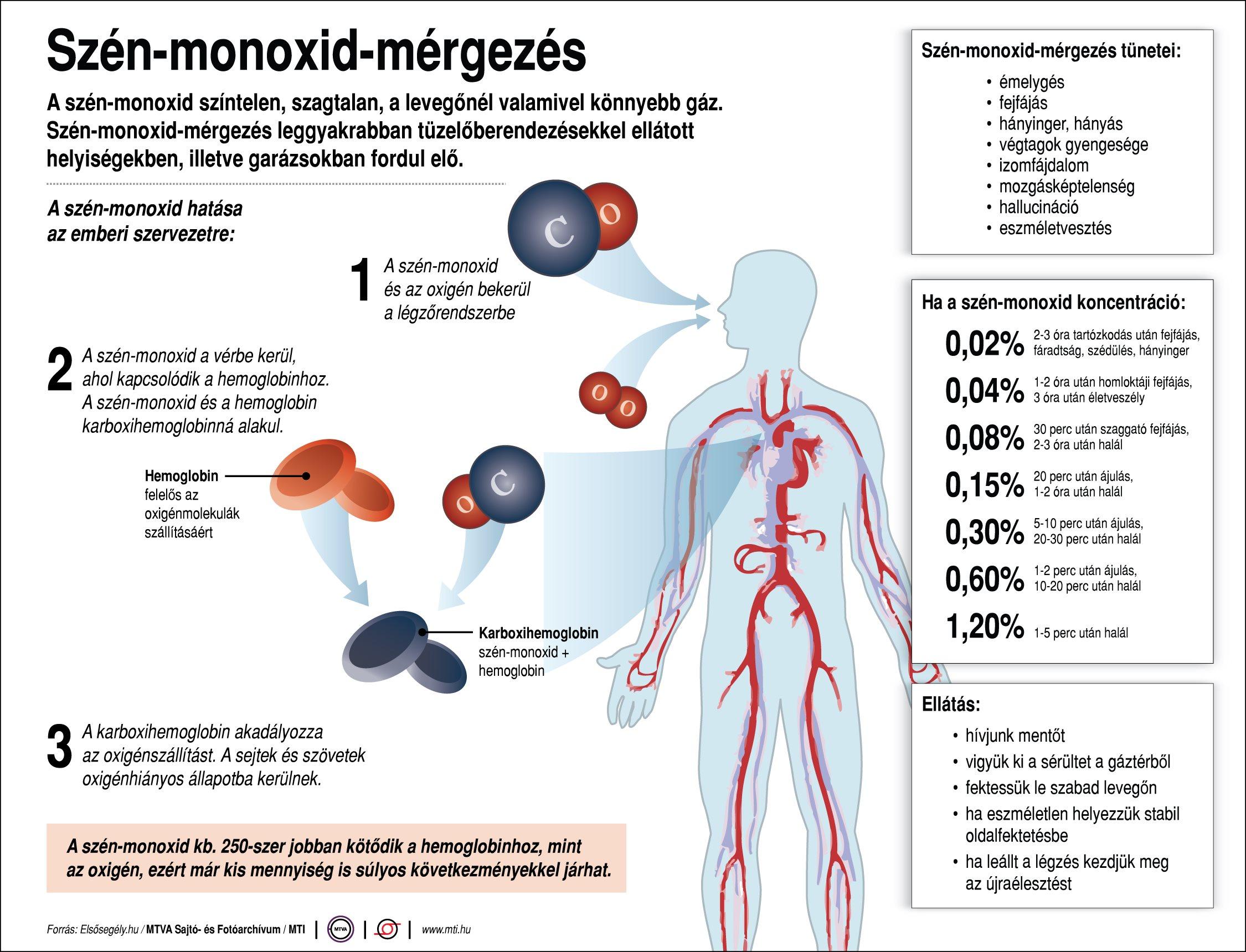 Szén-monoxid-mérgezés: 12 éves kisfiú halt meg a hétvégén egy rossz kémény miatt! - Hiába próbálták újraéleszteni