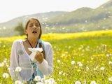 Pollenallergiások figyelmébe: a meleg hatására feléledt a természet!