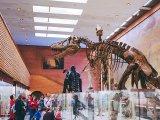 Tudtad, hogy van ingyenes belépő a családosoknak a múzeumokba? - Frissített, kiegészített tartalommal