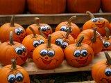 Töklámpás és egyéb tökből készült díszek Halloweenre