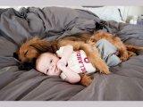 22 tündéri fotó, ami bizonyítja, miért kell minden kisgyermeknek egy háziállat! - Képeken a kutyák, cicák és a kis gazdik