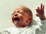 Hűtőszekrénybe rakták a kisbabát, mert unták a sírását - Ezért gondold meg jól, kire bízod a gyermeked!