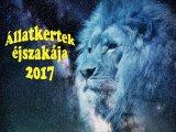 Állatkertek éjszakája 2017: 12 állatkert, vidámpark és egyéb állatos hely, ahova menjetek el augusztus 25-én a gyerekkel!
