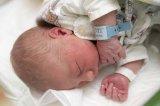 Újévi baba 2018: Budapesten és vidéken is kisfiú született az évben elsőként - Tündéri fotókon a kis újszülöttek