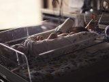 Szamárköhögés: két újszülöttet is kórházba kellett vinni a betegség miatt! - A szamárköhögés tünetei, kezelése