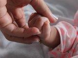 Újszülött kislányt hagytak egy babamentő inkubátorban Budapesten! Ezt a fotót készítették róla a kórház dolgozói