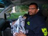Megmentették egy 4 éves gyermek életét a zalai rendőrök - A kislány az éjszaka közepén kóborolt el otthonról