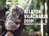 Állatok világnapja 2019: 13 állatos helyszín szuper programokkal Budapesten és vidéken! - Ide vidd el a gyereket októberben