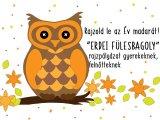 Rajzold le az Év madarát: Erdei fülesbagoly rajzpályázat gyerekeknek, felnőtteknek - A Magyar Madártani Egyesület kiírása