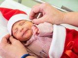 A legcukibb Mikulások! - Mikulás-ruhába öltöztették az újszülötteket az Orosházi Kórház szülészetén