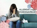 Allergia vagy koronavírus: Így különböztesd meg a két betegséget a tünetek alapján! - A tisztifőorvos tájékoztat