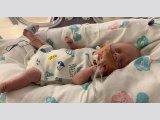Igazi csodababa: A terhesség 25. hetére, 765 grammal született a kisfiú - A vérmérgezést és a koronavírust is legyőzte