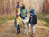 Természetjáró etikett: 17 fontos dolog, amit taníts meg a gyereknek, ha kirándulni mentek + 65 kirándulástipp