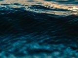 Tragédia: Vízbe fulladt egy kilencéves kisfiú, miközben a húgával játszott egy csatorna partján