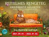 Rejtelmes Rengeteg: Erdőmentő küldetés - Izgalmas interaktív kiállítás és játék a Vajdahunyadvárban