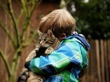 Nyugodtabbá válnak azok a cicák, akik autista gyermeket nevelő családhoz kerülnek