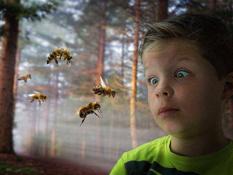Méhcsípés, darázscsípés gyerekeknél: milyen tünetekkel kell azonnal orvoshoz fordulni?