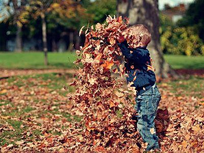 Őszi szünet 2016 - 15 szuper ingyenes program az őszi szünetre Budapesten és vidéken