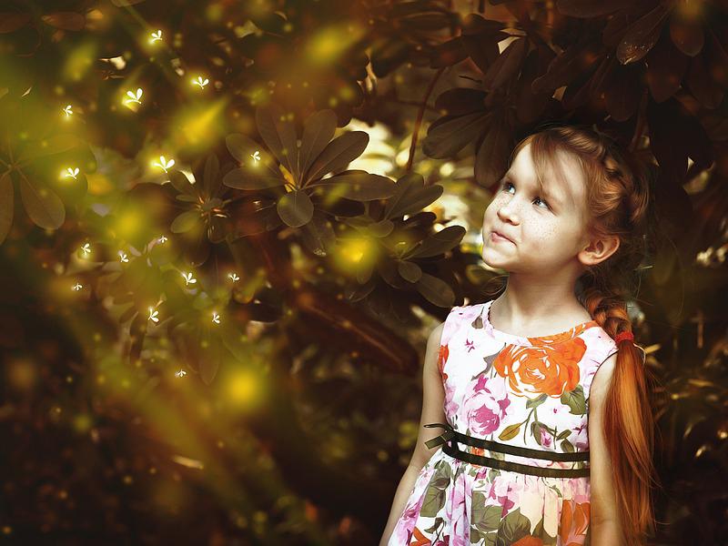 Szentjánosbogár-rajzás 2017: 6 hely az országban, ahol most átélheted a csodát - Hétvégi családi programnak is tökéletes