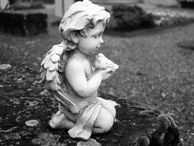 Halva született kisbabát találtak a miskolci temetőben, egy szoknyával letakarva - A rendőrség keresi az anyát