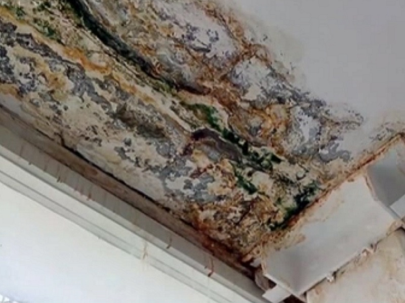 Penészes falak között tanulnak a gyerekek egy pécsi iskolában - Mégis nyárig kell várni, hogy megjavítsák a tetőt