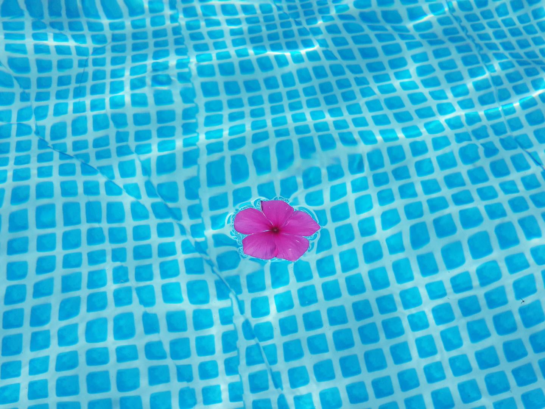 A kerti medencébe fulladt egy másfél éves kisfiú! A nagymama csak egy pillanatra hagyta magára a kis Benedeket